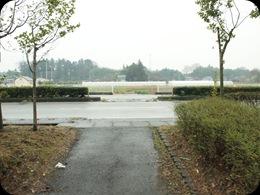 P3063625